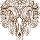 Hand Drawn Ornamental Goat Head - GraphicRiver Item for Sale