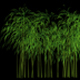 3D Bamboo Tree Growing Animation - VideoHive Item for Sale