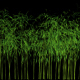 3D Bamboo Tree blowing in the Heavy Wind - VideoHive Item for Sale