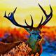 Canvas Photoshop Art Action - GraphicRiver Item for Sale