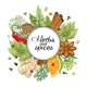 Vector Winter Round Design with Spices and Herbs - GraphicRiver Item for Sale
