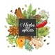 Vector Winter Square Design with Spices and Herbs - GraphicRiver Item for Sale