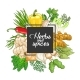 Vector Vegetable Square Design with Spices - GraphicRiver Item for Sale