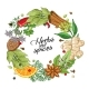 Vector Winter Circle Template with Spices, Herbs - GraphicRiver Item for Sale