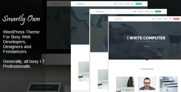 Smartly Own - WordPress Theme For I.T Professionals