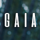 Gaïa - Photography and Stock Images WordPress Theme - ThemeForest Item for Sale