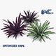Babiana Plant - 3DOcean Item for Sale