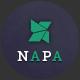NAPA | Multipurpose  Ecommerce PSD Template - ThemeForest Item for Sale