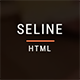 Seline - HTML5 Responsive Clean Template - ThemeForest Item for Sale