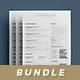 Simple Resume/Cv Bundle Volume 2 - GraphicRiver Item for Sale