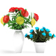 Ixora coccinea - 3DOcean Item for Sale