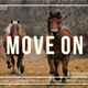 Move On - VideoHive Item for Sale