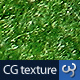 Grass Texture I - 3DOcean Item for Sale