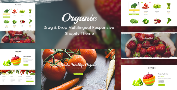 Organic - Drag & Drop Multilingual Responsive Shopify Theme