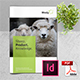 Sheep Farm Brochure - GraphicRiver Item for Sale