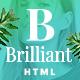 Brilliant - Morden Ecommerce HTML5 Template - ThemeForest Item for Sale