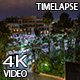 Night Street With Palm Trees - VideoHive Item for Sale