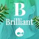 Brilliant - Morden Ecommerce Drupal Theme - ThemeForest Item for Sale