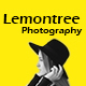 Lemontree - Photography & Portfolio WordPress Theme - ThemeForest Item for Sale