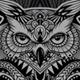 Owl Zen - GraphicRiver Item for Sale