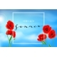 Summer Background with Poppies Flowers, Lettering - GraphicRiver Item for Sale