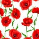 Seamless Pattern with Red Poppy Flowers - GraphicRiver Item for Sale