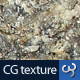 Rock & Stone Texture III - 3DOcean Item for Sale
