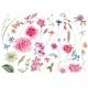 Watercolor Set of Vintage Floral Summer Natural - GraphicRiver Item for Sale