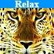Relax Music