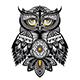 Owl Bird - GraphicRiver Item for Sale