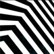 Zebra Room 2 - VideoHive Item for Sale