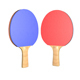 Ping Pong Paddle - 3DOcean Item for Sale