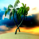 Palm Tree in Island - VideoHive Item for Sale