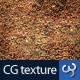 Rock & Stone Texture II - 3DOcean Item for Sale