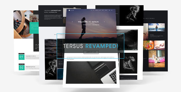 Review: Tersus - Business Portfolio Parallax Muse Template free download Review: Tersus - Business Portfolio Parallax Muse Template nulled Review: Tersus - Business Portfolio Parallax Muse Template