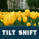 25 Tilt Shift Pro Lightroom Presets - GraphicRiver Item for Sale