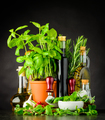 Still Life with Herbs and Cooking Ingredients - PhotoDune Item for Sale