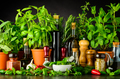 Still Life with Fresh Cooking Ingredients and Herbs - PhotoDune Item for Sale