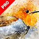 Watercolor Artist - Perfectum 2 - Photoshop Action - GraphicRiver Item for Sale