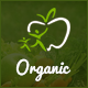 Organic Store - Agriculture and Beauty Products HTML Template - ThemeForest Item for Sale