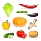 Set of Realistic Vegetables - GraphicRiver Item for Sale