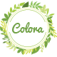 Colora - Responsive Organic, Cosmetic, Garden, Beauty, Food Shopify Theme (Sectioned) - ThemeForest Item for Sale