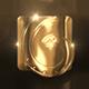Elegant Gold Logo Reveal - VideoHive Item for Sale