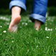 Footsteps on The Grass
