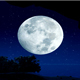 Moon Light - VideoHive Item for Sale