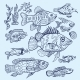 Vector Fish Sketch Set - GraphicRiver Item for Sale