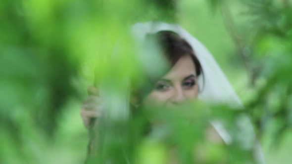 Mysterious Image of the Bride Against the Background of Green Foliage