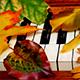 Romantic Cinematic Piano - AudioJungle Item for Sale