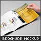 Landscape Brochure / Catalog Mock-Up - GraphicRiver Item for Sale