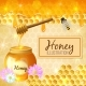 Colorful Honey Illustration - GraphicRiver Item for Sale